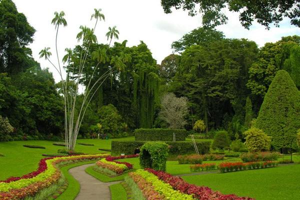 Королевский ботанический сад Канди