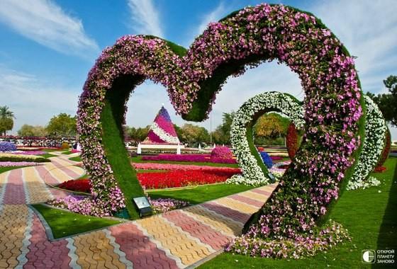 парк цветов аль айн